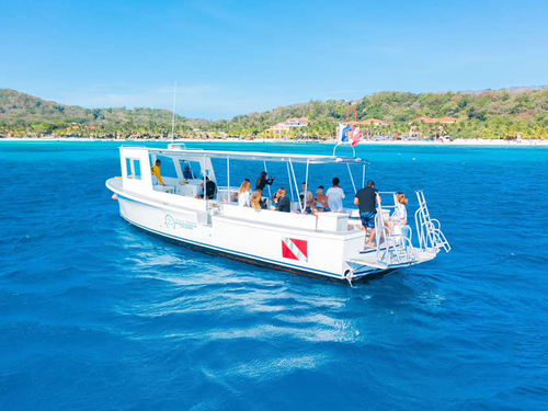 Roatan Snorkeling by Boat Shore Excursion Tickets