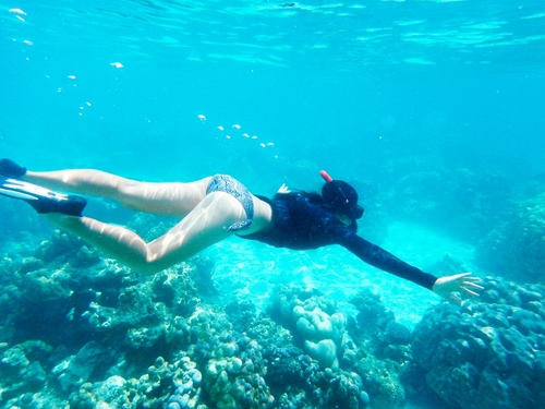 Roatan Honduras Pristine Bay Resort snorkel Tour Reviews