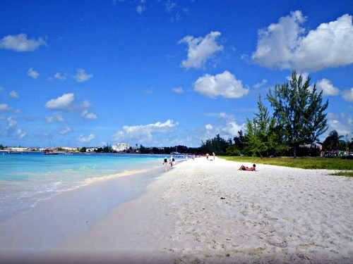 Barbados rum and beach Cruise Excursion Reviews