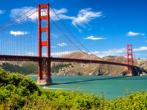 San Francisco City Highlights, Sightseeing and Bay Cruise Excursion