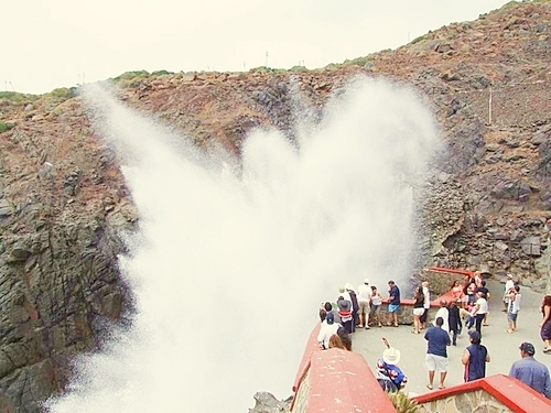 Ensenada  Mexico Geyser Tickets Prices