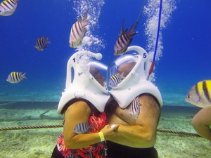 Sea Trek Helmet Dive Excursion from Playa del Carmen