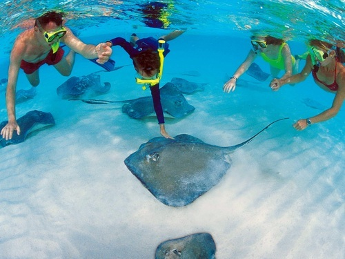 Grand Cayman  George Town snorkeling Tour