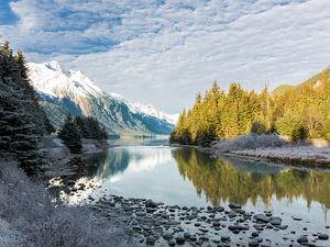 Skagway Nature and Wildlife Photography Excursion in Haines