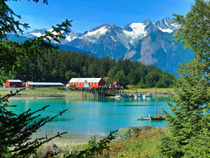Skagway Ultimate Nature Combo Excursion in Haines