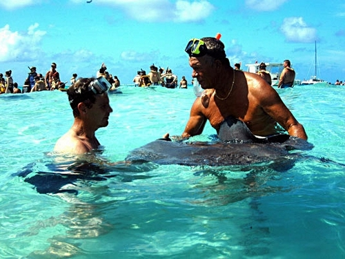 Grand Cayman   Snorkel Tickets Booking