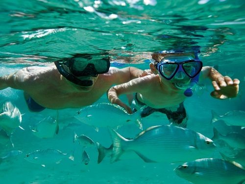 Curacao Willemstad guided snorkeling Excursion Booking
