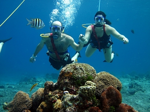 Cozumel  Mexico snuba diving Reservations