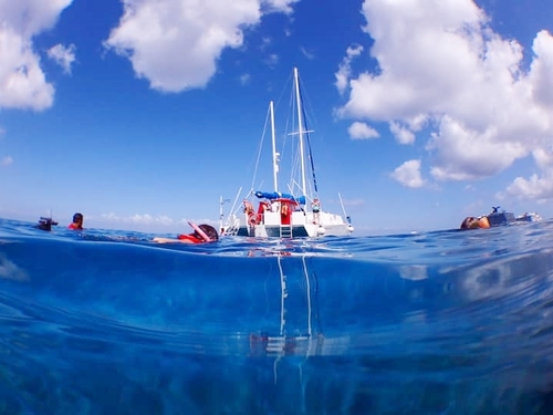 Cozumel Mexico sail and snorkel Trip Reservations