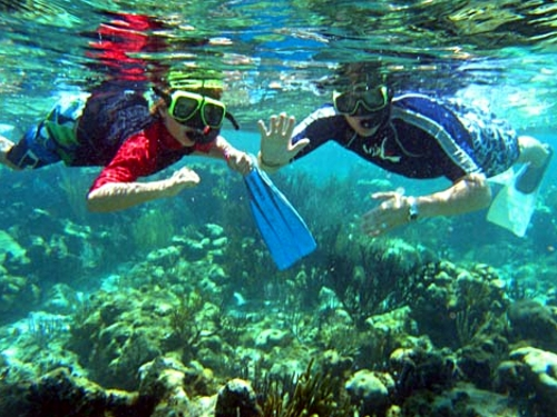 grand cayman jet ski stingray city and coral reef snorkel safari