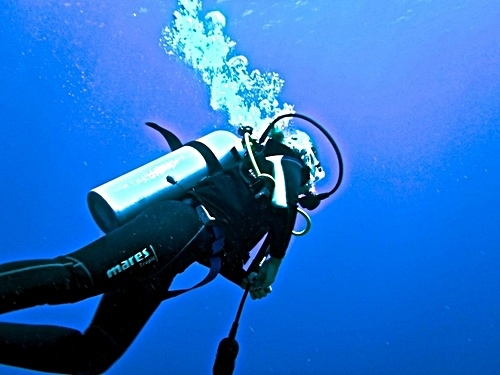 Roatan Certified Dive Master Shore Excursion Prices