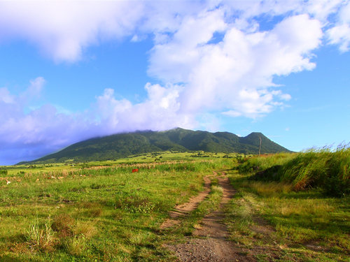 St. Kitts Old Sugar Estate UTV Shore Excursion Reservations