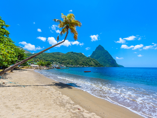 St. Lucia (Castries) banana platation Excursion Reservations