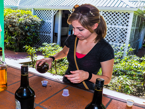 St. Lucia Castries rum tasting Tour Tickets