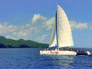 St. Lucia Catamaran Sail to Soufriere, Coubaril Estate and Lunch Excursion