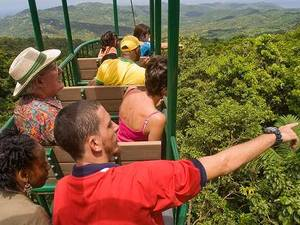 St. Lucia Rainforest Aerial Tram Excursion