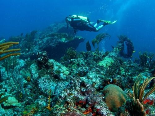 Famous Scuba Divers st Maarten Famous Scuba Dive