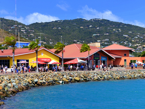 St. Thomas Island Combo Sightseeing and Shopping Cruise Excursion