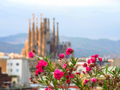 Barcelona Sagrada Familia Shore Excursion Booking