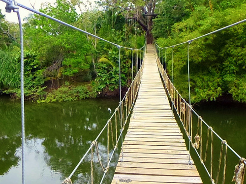 Roatan jungle canopy zipline Cruise Excursion Cost