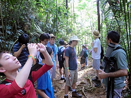 Puerto Caldera jungle rainforest Cruise Excursion Prices