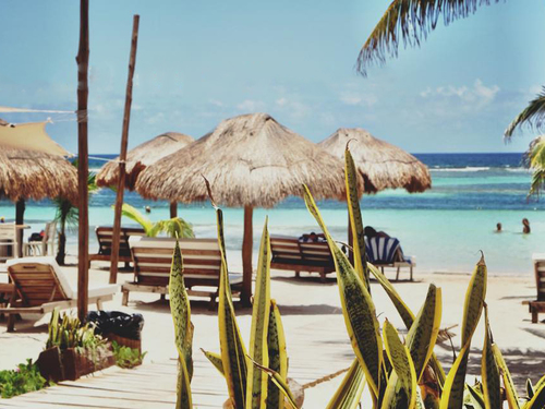 Costa Maya Mexico ocean Tour Booking