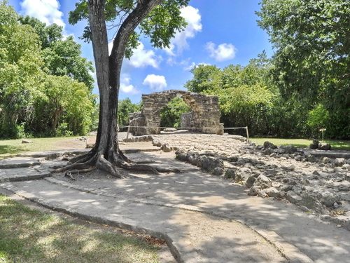 Cozumel Mexico San Gervasio Mayan Ruins Cruise Excursion Cost