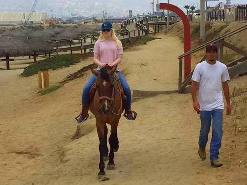 Ensenada guided horseback Cruise Excursion Prices