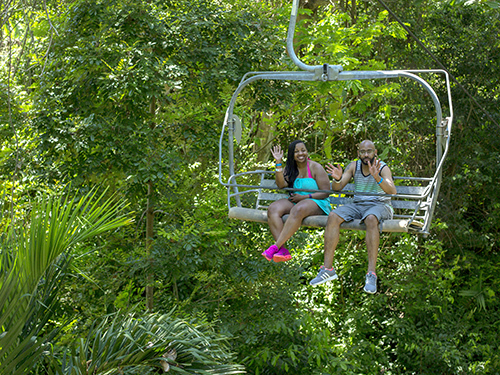 Ocho Rios  Jamaica mystic mountain Cruise Excursion Reviews
