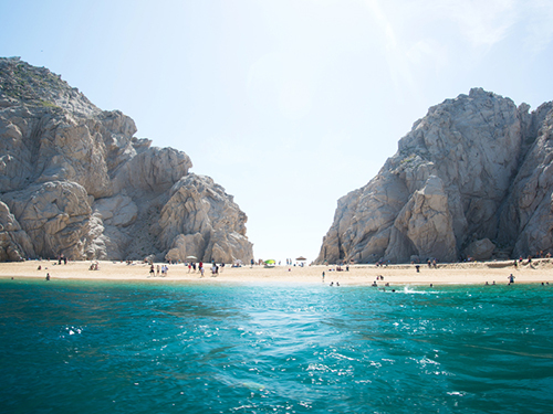 Cabo San Lucas breeching whales Cruise Excursion Reviews
