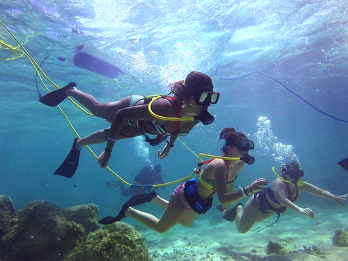 Cozumel Mexico SNUBA Dive and Snorkeling Chankanaab Lagoon Tours Reservations