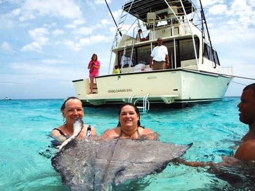 Grand Cayman captains choice snorkel Trip Reviews