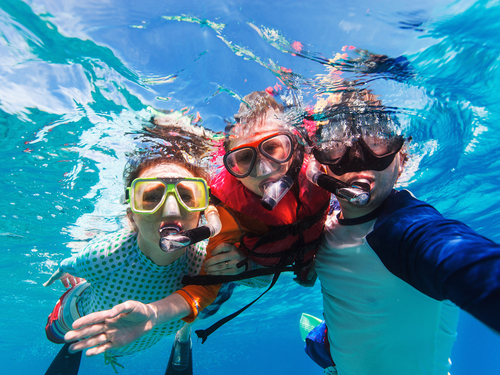 Grand Cayman swim with stingrays Shore Excursion Prices