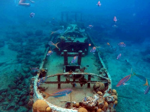 Curacao Willemstad tugboat wreck snorkel Excursion Booking