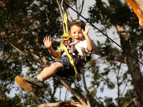 Maui Kahului ziplining Tour Prices