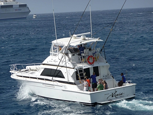 Curacao yacht cruise Cruise Excursion Reservations