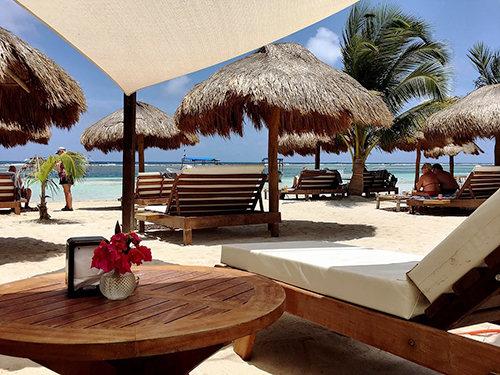Costa Maya  Excursion Prices