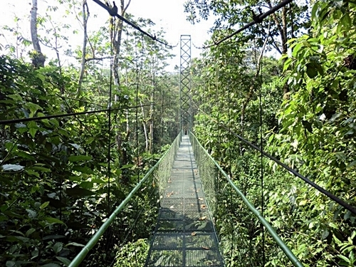 Puerto Caldera rain forest Excursion Cost