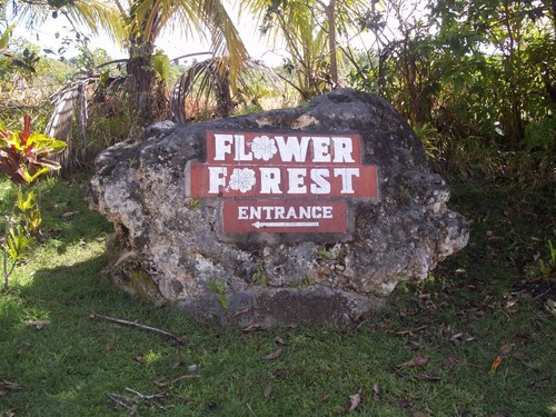 Barbados  West Indies (Bridgetown) Flower Forest Trip