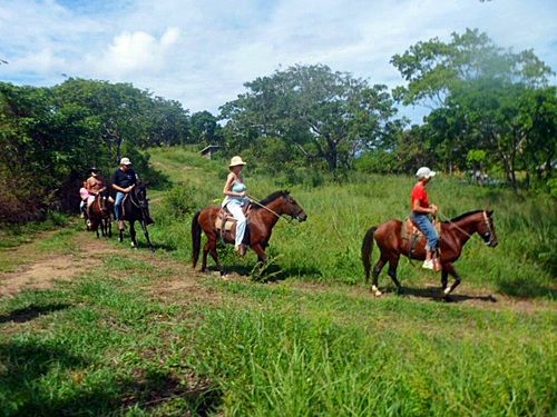 Roatan jungle horse riding Tour Reservations