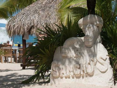 Cozumel mr sanchos beach club Cruise Excursion Reviews