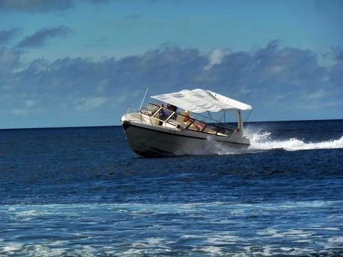 Curacao beach break Cruise Excursion Prices