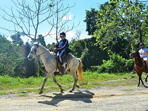 Roatan Honduras horseback riding Shore Excursion Prices