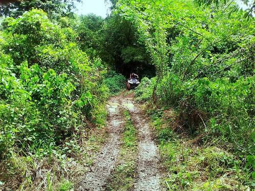 Belize atv and zip line Excursion Prices